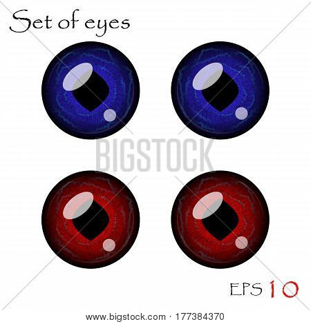Beautiful pupils of eyes. Vector eyes collection.