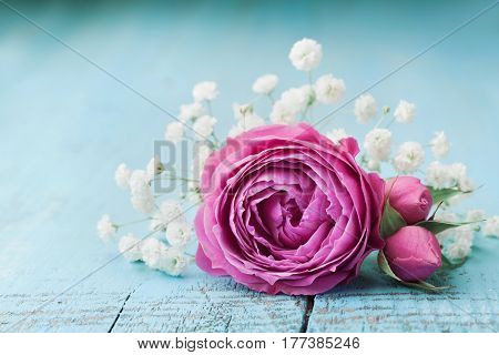 Beautiful pink rose flower and gypsophilla on turquoise vintage table.