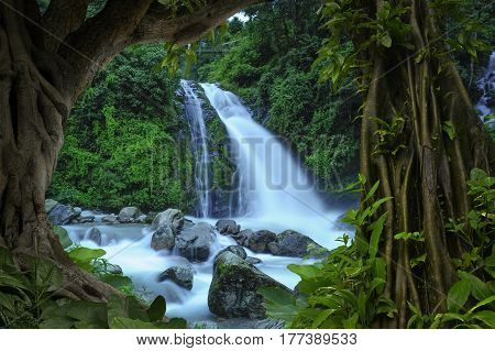Waterfalls and rivers in the sub-tropical jungle of Nepal in the Annapurna area