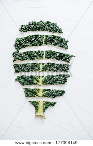 Fresh Cutting Green Organic Kale Leaves On White Background. Top View