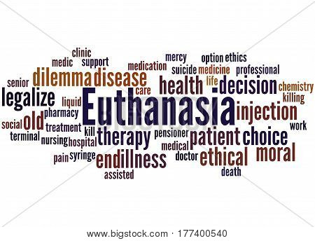 Euthanasia, Word Cloud Concept 2