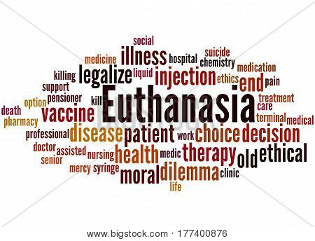 Euthanasia, Word Cloud Concept 7
