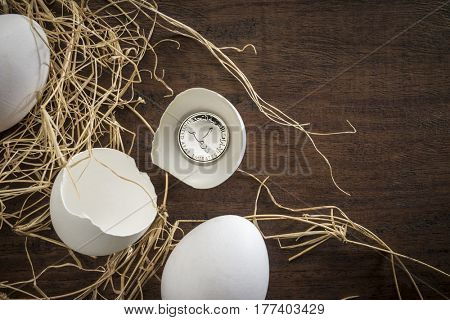 'Matured investment' - a creative concept. UAE one dirham coin in a broken egg shell.