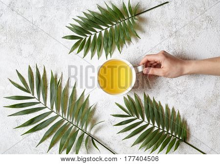 A female hand holds a cup of green natural antioxidant tea on a white concrete background. Rest in warm tropical countries concept. Organic tea and palm branches. Flat lay drink composition.