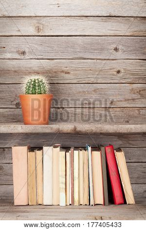 Old books on a wooden shelf and cactus plant. With empty space