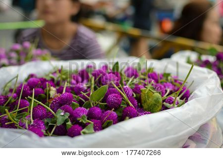 The famous Flower market Pak Klong Talad in Bangkok Thailand