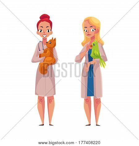 Two women, female veterinarians, vets in medical coats holding cat, pet and parrot, bird, cartoon vector illustration isolated on white background. Female vets, veterinarian doctors holding pets
