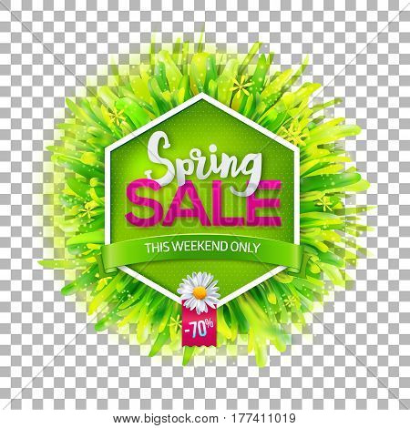 Spring sale label with green grass and chamomile on transparent background. Green ribbon with This weekend only text. Promotion banner. May used as banner, poster, flyer. Vector illustration