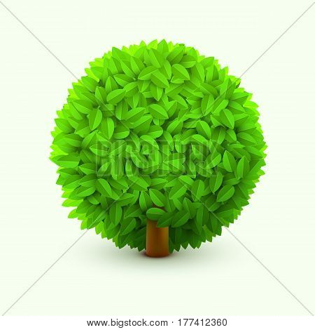 Cute bush with green leaves. Realistic spring or summer foliage, bush or hedge. Eco concept. Vector illustration