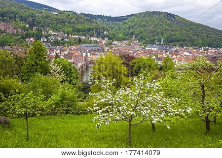 Heidelberg City In Spring, Baden-wurttemberg, Germany