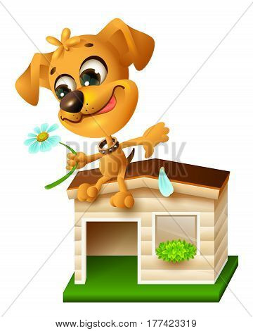 Funny yellow puppy sitting on doghouse and tearing off petal of chamomile. Isolated on white vector cartoon illustration