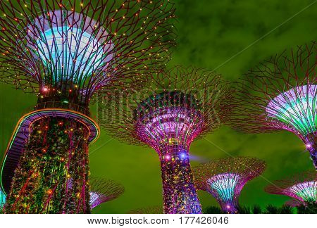 Park Gardens by thea Bay in Singapore - nature and travel background