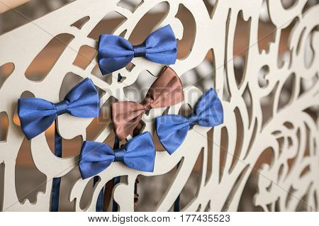 Beautiful wedding trellis decorated with bleu and brown silk bow-ties