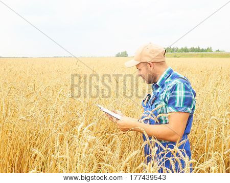 Farmer In A Plaid Shirt Controlled His Field And Writing Notes.  Wheat Harvest.