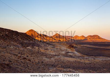 Egyptian Desert Scenes
