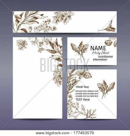 Corporate Style - Herbs. Vector Background Sketch Herbs. Herbs - Bay Leaf, Dill, Thyme, Sage, Rosema