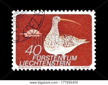 LIECHTENSTEIN - CIRCA 1973 : Cancelled postage stamp printed by Liechtenstein, that shows Eurasian Curlew.