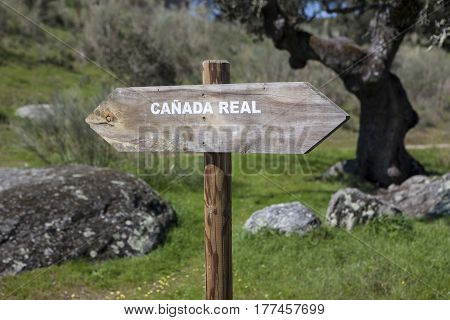 Royal cattle track -Cañada Real- signpost. Royal drovers road for livestock on foot Spain