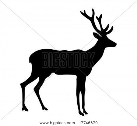 vector silhouette deer on white background