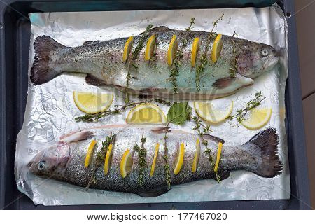 Two River Fish Trout On Baking Tray Stuffed With Slices Of Lemon And Sprigs Of Thyme Green