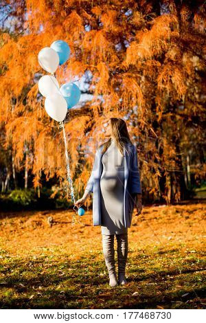 Young Pregnant Woman Walks In Autumn Park With Balloons In Hand