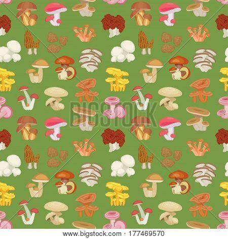Edible mushroom seamless pattern. Flat icons. Vector illustration.