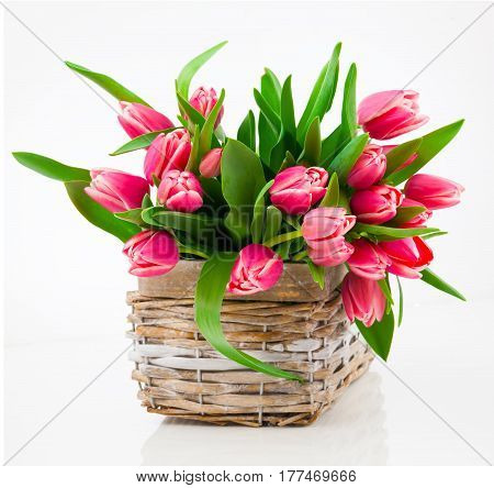 Red tulip flowers in a basket on a white background
