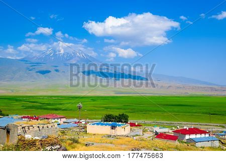 View of beautiful snow-capped mountain; Mt. Ararat with small village and green grass field