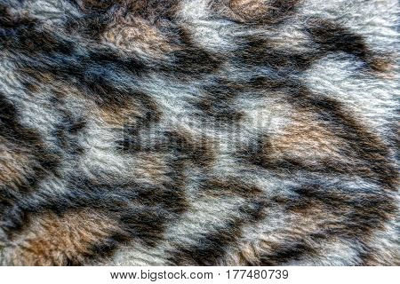 Gray woolen spotted cloth texture from clothes