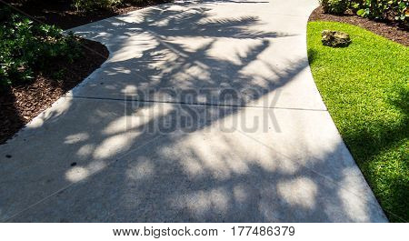 A tropical path shaded by palm tree shadows during a perfect sunny day. New Providence, Nassau, Bahamas