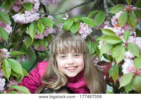 Small Baby Girl With Smiling Face Among Pink Sakura Blossom
