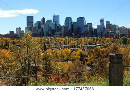 view of downtown Calgary in the fall