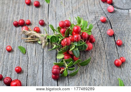 Bunch of red cowberry on wooden background