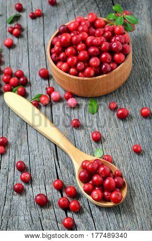 Cowberry in the wooden spoon. Cowberry in wooden bowl on rustic table.