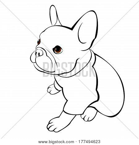 French Bulldog head logo or icon in white for a mascot and T shirt graphic.