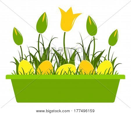 vector tulips and easter eggs in planter isolated on white background