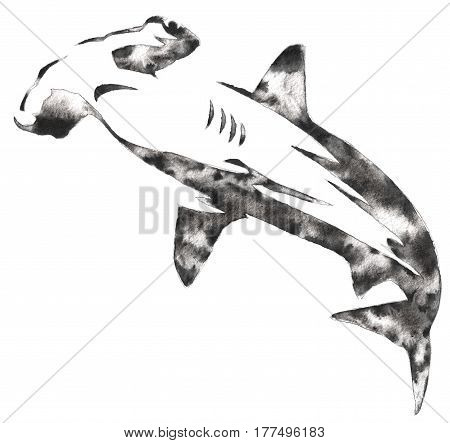 black and white painting with water and ink draw hammerhead illustration