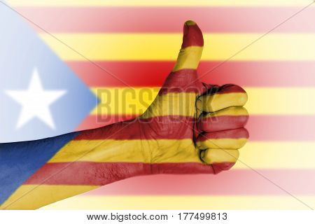 Independence Referendum Is Expected To Be Held In Catalonia