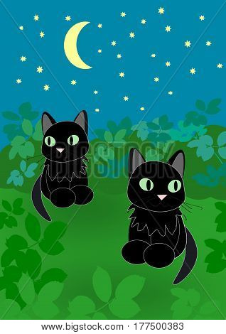 Two black cats sitting together under a starry sky.