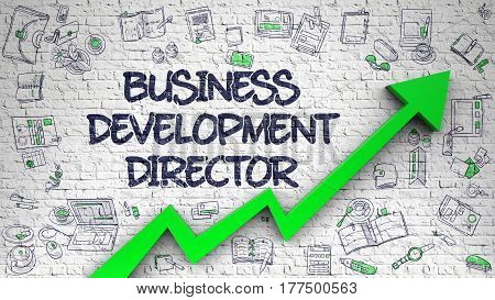 Business Development Director Drawn on Brick Wall. Illustration with Hand Drawn Icons. Business Development Director - Success Concept with Doodle Design Icons Around on the White Wall Background. 3d.