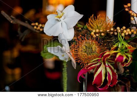 Beautiful composition of multi-colored exotic flowers on the holiday