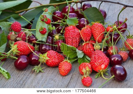 Mix of fresh juice berries on wooden backgrounds