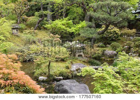 Garden In Nara, Japan