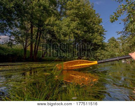 A Paddle and its reflection in the river
