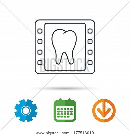 Dental x-ray icon. Orthodontic roentgen sign. Calendar, cogwheel and download arrow signs. Colored flat web icons. Vector