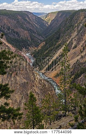Yellowstone River Cutting through the Lower Yellowstone Canyon in Yellowstone National Park in Wyoming