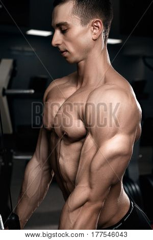 Triceps bodybuilder in the gym. Male sports pectoral muscles.