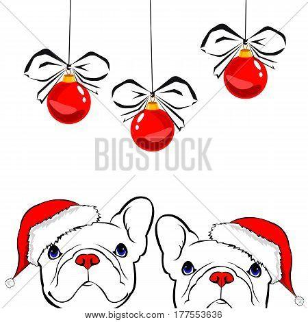 French bulldog Portrait in a Santa's hat . Vector illustration.