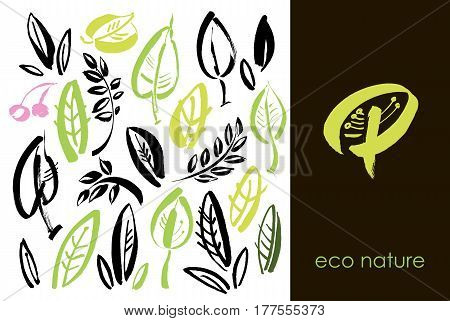 Set of hand drawn leaves green leaf sketches and doodles of leaf and plants green leaves vector collection. Design elements with ink and brush. Hand drawing with paint brush