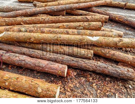 Heap of wooden logs for rural house